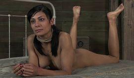 hot busty brunette Beretta James is tied